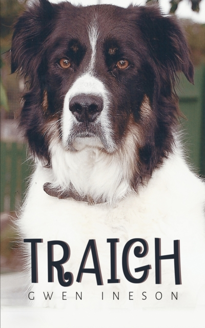 Traigh
