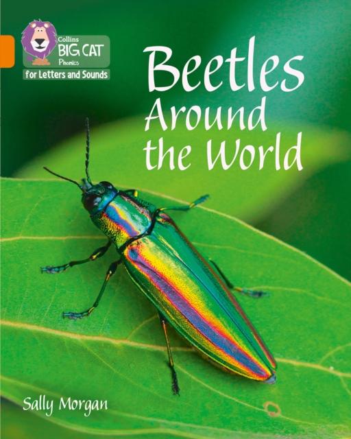 Beetles Around the World