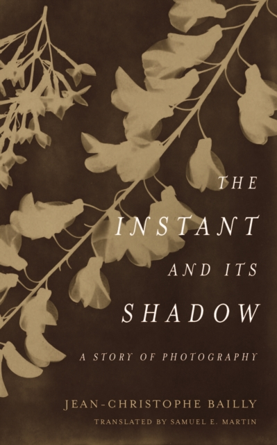 Instant and Its Shadow