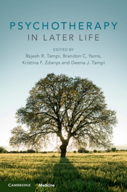 Psychotherapy in Later Life
