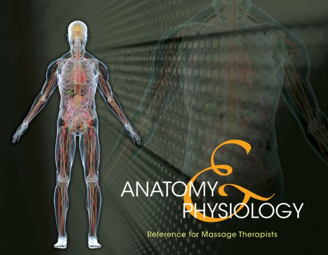 Anatomy & Physiology Reference for Massage Therapists, Spiral bound Version