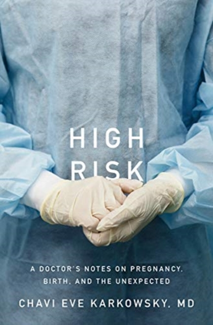 High Risk - A Doctor`s Notes on Pregnancy, Birth, and the Unexpected