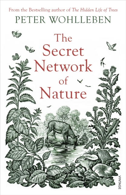Secret Network of Nature