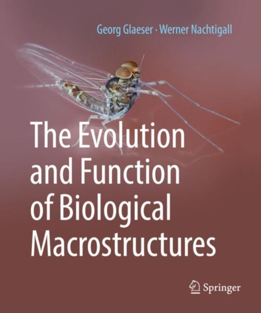 Evolution and Function of Biological Macrostructures
